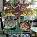 Выставка ''Пёстрая поляна''. Работы Старостиной Натальи Георгиевны
