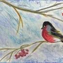 Снегирь. Бумага, сухая пастель. Рис. Анны Захаровой