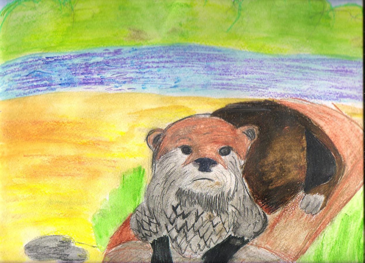 красная книга животные рисунки детей