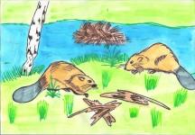 Рисунок животного из красной книги для конкурса